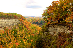 Letchworth (Sarah Sonny) Tags: fall autumn leaves colors landscape upstateny fallcolors falltrees gorge hills colorful