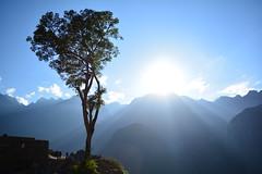 DSC_0497 (gabrielesteban189) Tags: machu picchu machupicchu amanecer montaa nature