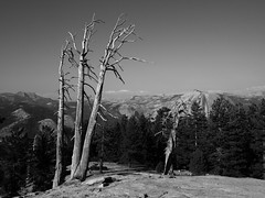 sentinel dome Yosemite Park (audreybonduelle) Tags: yosemite sentinel dome