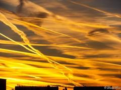 Colorful sunrise (Daniel Boca) Tags: colour colours colorful color colors morning sky yellow highclouds contrail contrails building autumn october cirrus cloud clouds outdoor nature cloudscape