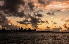 Auckland Sunset (Kiwi-Steve) Tags: auckland devonport nz newzealand northisland sunset colour cloud landscape skytower haurakigulf nikon nikond7200 sky