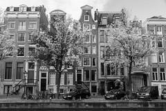 Nieuwe Herengracht Amsterdam (Tom van der Heijden) Tags: amsterdam grachten canal nieuweherengracht grachtengordel herenhuizen pakhuizen