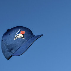 #42/52 Jays fall (PJMixer) Tags: 52weekproject nikon baseball dogwood52 dogwoodweek42 hat home minimalism
