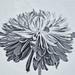 Chrysanthemum B&W