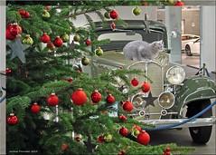 Weihnachten in der KLASSIKSTADT