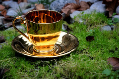 Golden Tea Cup (Aidan Pearson Photography) Tags: life color colour reflection art cup nature coffee grass photography golden moss still cool interesting tea awesome great aidan like follow favourite pearson