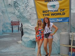 Antartica (Elysia in Wonderland) Tags: world sea vacation usa holiday cold ice america penguins lucy orlando florida flag bottom antarctica september arctic antartica antarctic elysia 2014