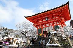 Snowy day in Kyoto (Teruhide Tomori) Tags: winter red snow japan kyoto      japon kiyomizutemple
