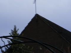 Nearly Deleted 1 (carlene byland) Tags: camera winter blur cold birds garden feathers surprise archway birdofprey sparrowhawk kettering goldenlight