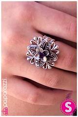 225_ring-purplekit1june-box04