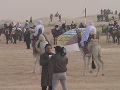 Prepping for Camel Races at Douz International Festival of the Sahara