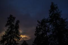 Sunset (pato_82) Tags: friends light sunset red summer sky sun mountain alps tree nature beautiful silhouette skyline night forest schweiz switzerland evening daylight europe day view suisse swiss horizon great nightlight svizzera alpe skyblue swissalps graubunden grigioni