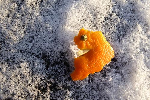 schnee winter snow cold ice cool kalt eis lhiver cristals kristalle schneekristalle hibierno