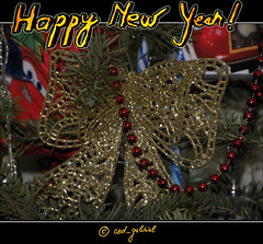 New Year greeting card: Happy New Year! (cod_gabriel) Tags: brad pom card newyearseve greetingcard anonovo happynewyear aonuevo felizanonovo  gelukkignieuwjaar glcklichesneuesjahr felizaonuevo bonneanne  gottnyttr godtnytr anulnou felicitare mutluyllar szczliwegonowegoroku   boldogjvet annou   lamuliani pomdecrciun  braddecrciun happynewyear2015 lamuliani2015