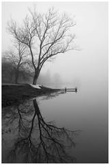 Beaver Lake Reflection (Joe Franklin Photography) Tags: lake nature water asheville northcarolina carolina beaverlake westernnorthcarolina joefranklin almostanything wwwjoefranklinphotographycom