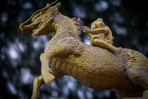 Riding the Dragon Horse
