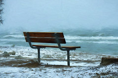 Park Bench in Winter (4thmedium) Tags: park winter lake ontario cold beach jack waves lonely impressions parkbench darling blakerudis