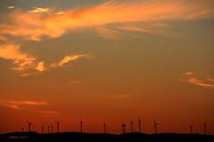 o dia que amanhece (antoninodias13) Tags: portugal canon faro surf nuvens algarve viagens amanhecer aljezur silncio paisagens bordeira carrapateira praiadoamado costavicentina tonalidades energiaelica energiasalternativas antoninodias13 pontaldacarrapateira locaisasul