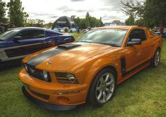 Mustang (Anna Calvert Photography) Tags: classic car yellow vintage automobile australia pony transportation canberra mustang carshow mustangcarshow oldparliamenthoseslawns