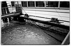 Haltestelle (MightyPirateThreepwood) Tags: venice bw white black film analog minoltax700 sw venezia venedig schwarz weis negativscan