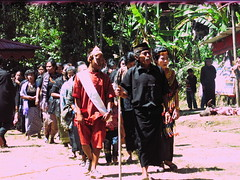 Guests Procession at Torajan Funeral