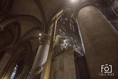Notre Dame (Fabio_Moro) Tags: paris france notredame francia parigi cattedrale