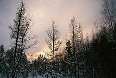 () Tags: film analog finland inari pentax mini 400 lapland fujifilm analogue arcticcircle northpole fujixtra400 espio uc1 pentaxuc1 pentaxespiomini
