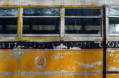 portland coach (jtr27) Tags: bus yellow 50mm md minolta f14 sony maine junkyard alpha ilc csc nex ilce mirrorless dsc00695 roxsen emount nex7 jtr27 lensturbo focallengthreducer portlandcoach