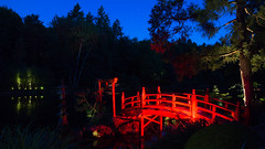DSC05450 (regis.verger) Tags: temple zen nuit parc nocturne asiatique vgtal maulvrier