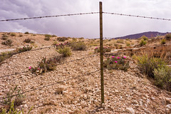 Behind the Fence (LutzSchramm) Tags: arizona coloradoriver leicam9 leitzelmarit2828mm marblecanyon noplaces nordamerika usavereinigtestaatenvonamerika unitedstatesofamerica usa us