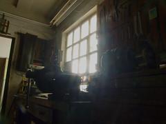 Die alte Werkstatt (altpapiersammler) Tags: old light luz window vintage licht lumire alt fenster oficina workshop arbeit tool luce atelier warsztat wiato  werkzeug