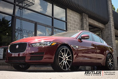 Jaguar XE with 20in Savini BM12 Wheels and Pirelli PZero Tires (Butler Tires and Wheels) Tags: cars car wheels tires vehicles vehicle jaguar rims savini xe saviniwheels 20inwheels butlertire jaguarxe butlertiresandwheels savinirims 20insaviniwheels 20insavinirims 20inrims jaguarwith20inwheels jaguarwith20inrims jaguarwithwheels jaguarwithrims savinibm12 savinibm12wheels savinibm12rims 20insavinibm12wheels 20insavinibm12rims jaguarwithsavinibm12wheels jaguarwithsavinibm12rims jaguarxewith20insavinibm12wheels jaguarxewith20insavinibm12rims jaguarxewithsavinibm12wheels jaguarxewithsavinibm12rims jaguarxewith20inwheels jaguarxewith20inrims jaguarwith20insavinibm12wheels jaguarwith20insavinibm12rims xewith20insavinibm12wheels xewith20insavinibm12rims xewithsavinibm12wheels xewithsavinibm12rims xewith20inwheels xewith20inrims jaguarxewithwheels jaguarxewithrims xewithwheels xewithrims
