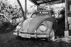 wv (BigZoic) Tags: monochrome noir et blanc argentique ilford hp5 canon a1 coccinelle volkwagen vw cox vintage bw