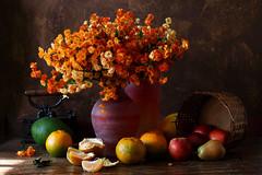 Tangerines (Luiz L.) Tags: luizlaercio flowers fruits light indoor stilllife tangerines