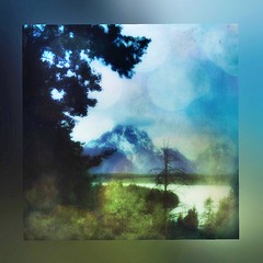 Through the mist... (Sherrianne100) Tags: peaceful misty mountains wyoming grandtetonnationalpark