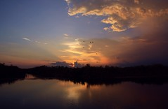 Moody Moment (PelicanPete) Tags: light sunset red sky usa cloud black nature water beautiful beauty clouds skyscape landscape kayak ray shadows unitedstates natural florida outdoor dusk wildlife horizon scenic trails calm canoe pillows ibis trail national serene rent canopy cloudscape rolling puffyclouds floridaeverglades refuge southflorida sawgrass naturephotography loxahatchee landscapephotography littledrama riverofgrass sunsetphotography diamondclassphotographer flickrdiamond canyoucanoe launcharea moodymoment blendedblues palmbeachcountyfl dmslair artisticsunsetphotography springuplight quartasunset333