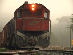 Trem cargueiro (Mrcio100) Tags: roa nova piraquara paran brasil trem tnel trilho cargueiro marcio100 mrcio100 nikon