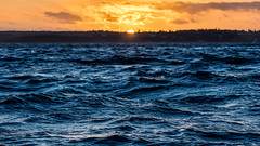 Windy Sunset (Jens Haggren) Tags: olympus em1 sun sunset sea seascape water windy sky clouds colours landscape waves trees silhouettes vrmd sweden