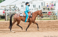 Appaloosa (BirdFancier01) Tags: horse equine trail arena cowgirl appaloosa trot