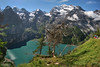 Lago di Oeschinen / Oeschinensee (Fabio Bianchi 83) Tags: oeschinen oeschinensee kandersteg oberlandbernese berneroberland bernesealps montagna mountain alpi alpes alps alpen lago lake alpinelakes laghialpini escursionismo hiking estate summer sommer berg svizzera schweiz suisse switzerland