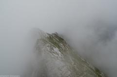 Cloudy view (phlpp.hrm) Tags: cloudy wolkig clouds wolken fog nebel schrtenspitze berchtesgaden gipfel summit alpen alps alpine nature natur landscape landschaft outdoor germany deutschland bavaria bayern nikon