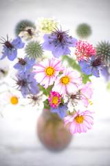 August blooms still life (photoart33) Tags: cosmos stilllife nigella loveinthemist pink blue soft seaholly