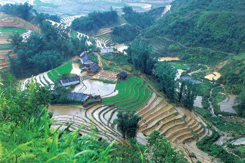 Tour Sapa - Hạ Long tiết kiệm 4 triệu đồng