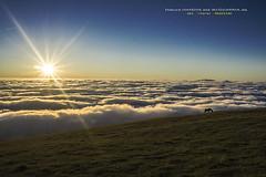 Naturaren edertasuna (Jabi Artaraz) Tags: jabiartaraz jartaraz zb euskoflickr natura edertasuna inmensidad niebla light luz contraluz