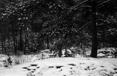 2014-Nov_Pirkkola_Balda-Radionar_005 (Tatu Korhonen) Tags: 6x9 schneiderkreuznach balda jubilar radionar 45105mm