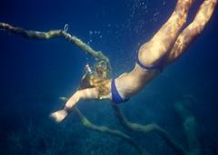 Into the blue (jonathan charles photo) Tags: blue sea art girl photo topf75 underwater snorkel jonathan dive charles bikini symbolism