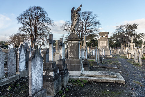 Mount Jerome Cemetery & Crematorium is situated in Harold's Cross Ref-100412