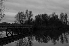 5/365 - The Bridge (Freihand Fotografie) Tags: street bridge autumn winter white black art fall project germany dark landscape photography 50mm nikon depression 365 d800