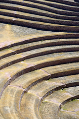 Terracing in Moray (indomitablemachine) Tags: peru ruins terrace circles sacredvalley moray