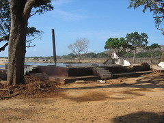 Post-Tsunami Remains of Tourist Lodging in Yala